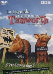 The Legend of the Tamworth Two