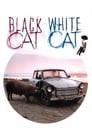 Black Cat, White Cat