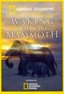 Waking the Baby Mammoth
