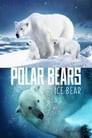 Polar Bears: Ice Bear