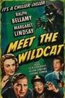Meet the Wildcat
