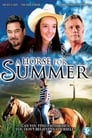 A Horse for Summer