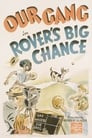 Rover's Big Chance