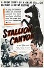 Stallion Canyon