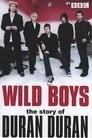 Wild Boys: The Story of Duran Duran