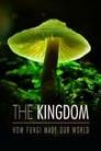 The Kingdom: How Fungi Made Our World