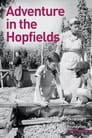 Adventure In The Hopfields