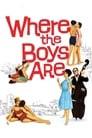 Where the Boys Are