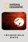 Incredible Bats