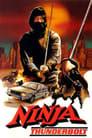 Ninja Thunderbolt