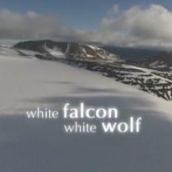 Season 27 Episode 5