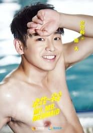 My Mr. Mermaid