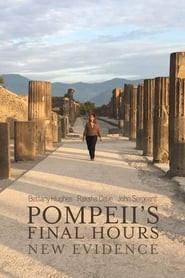 Pompeii's Final Hours: New Evidence