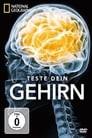 Test Your Brain