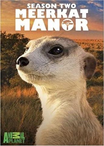 Meerkat Manor Season 2